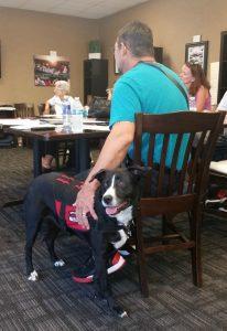 Photo of service dog